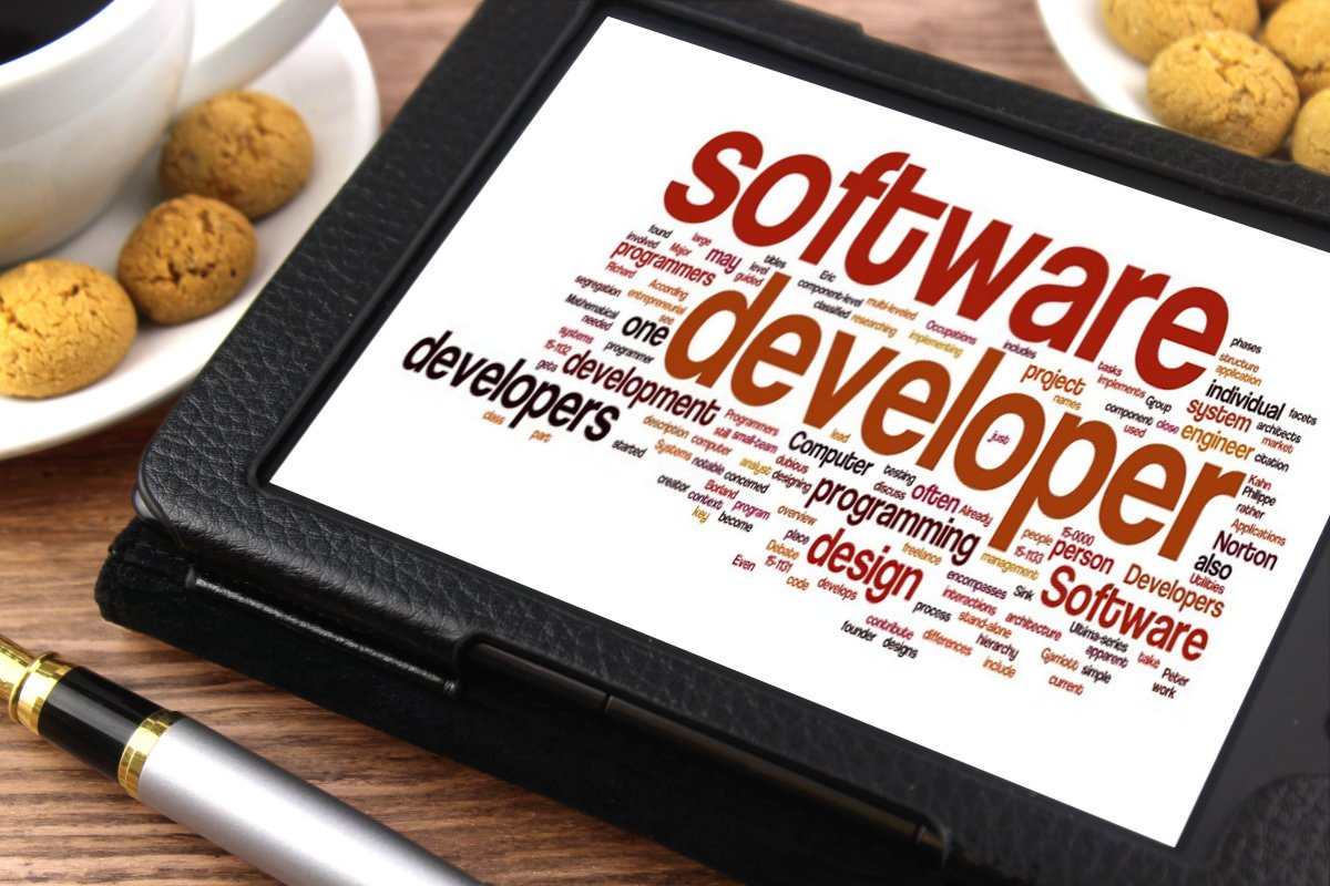 Software developer1