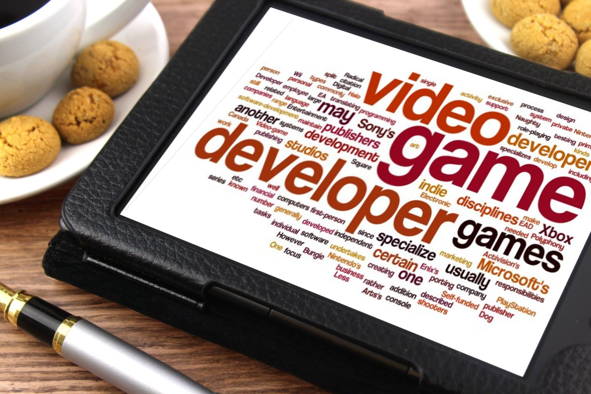 Video game developer1