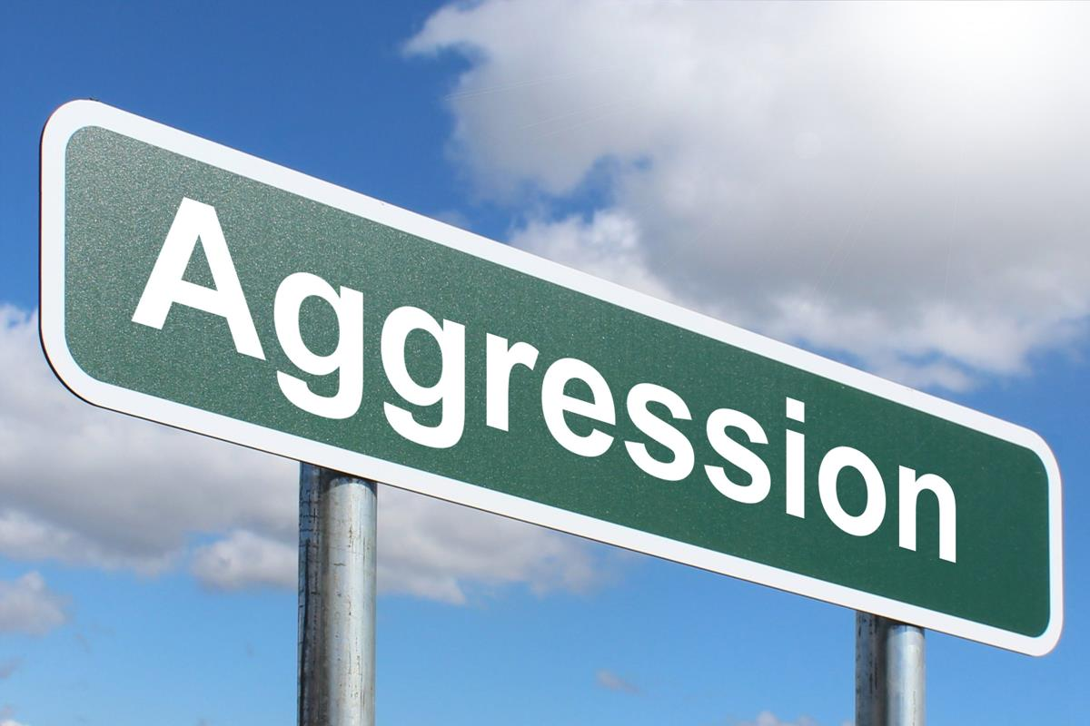 Aggression
