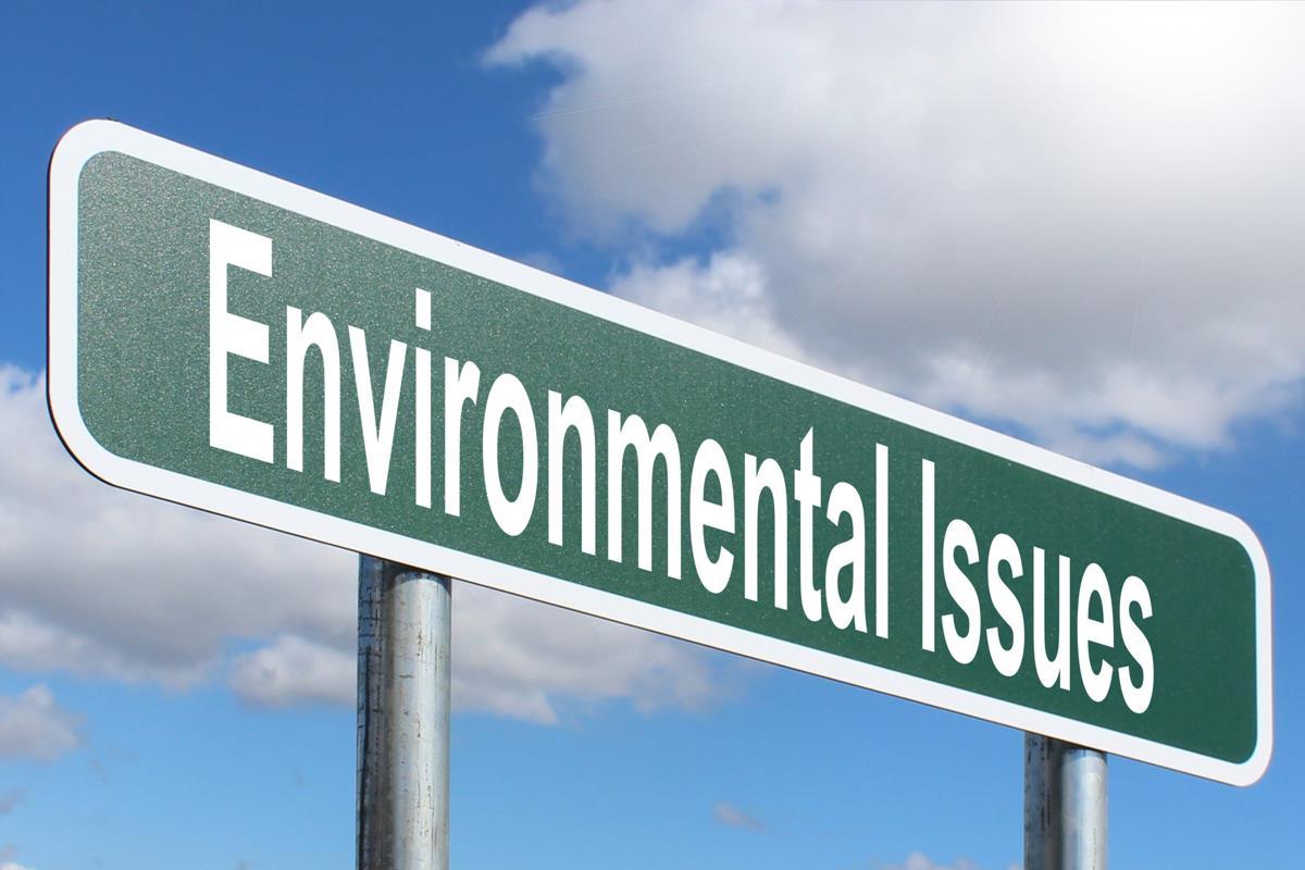 Environmenta Issues