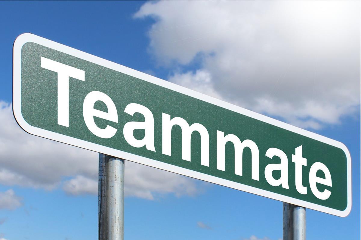 Teammat