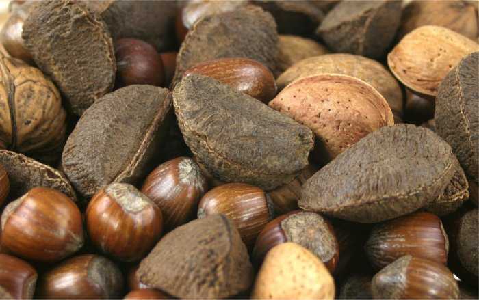 Various Nuts