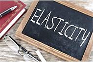 Elasticity