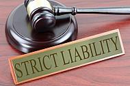 Strict liability1